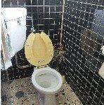 ピンクトイレ